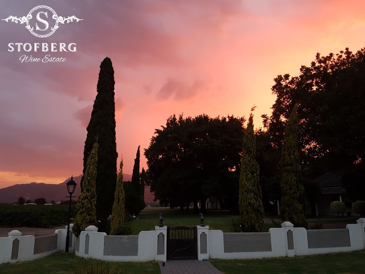 Stofberg Wines Estate