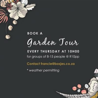 Garden Tours at Bosjes