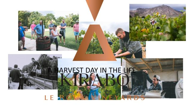 Kirabo Harvest days
