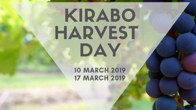 Kirabo – Day in the life