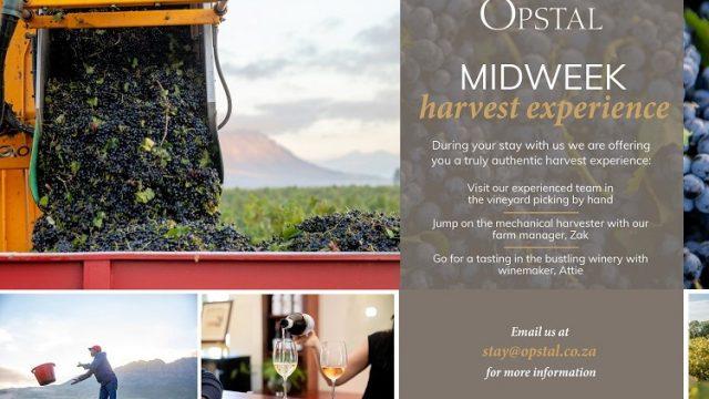 Opstal Harvest Midweek special