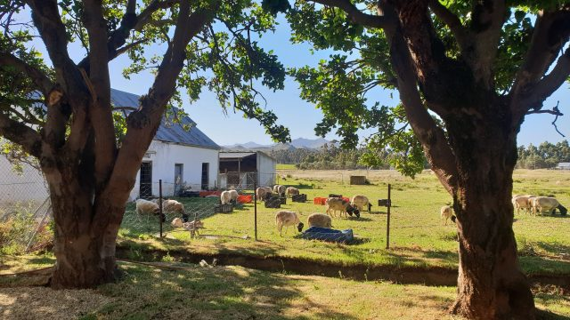 Tevrede Farm Accommodation