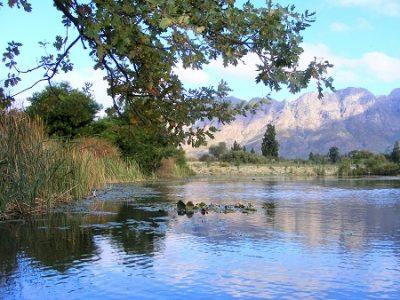 Fly Fishing @ Slanghoek Mountain Resort