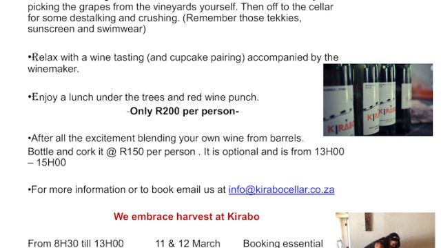 Kirabo Private Cellar: A day in the Life of a winemaker